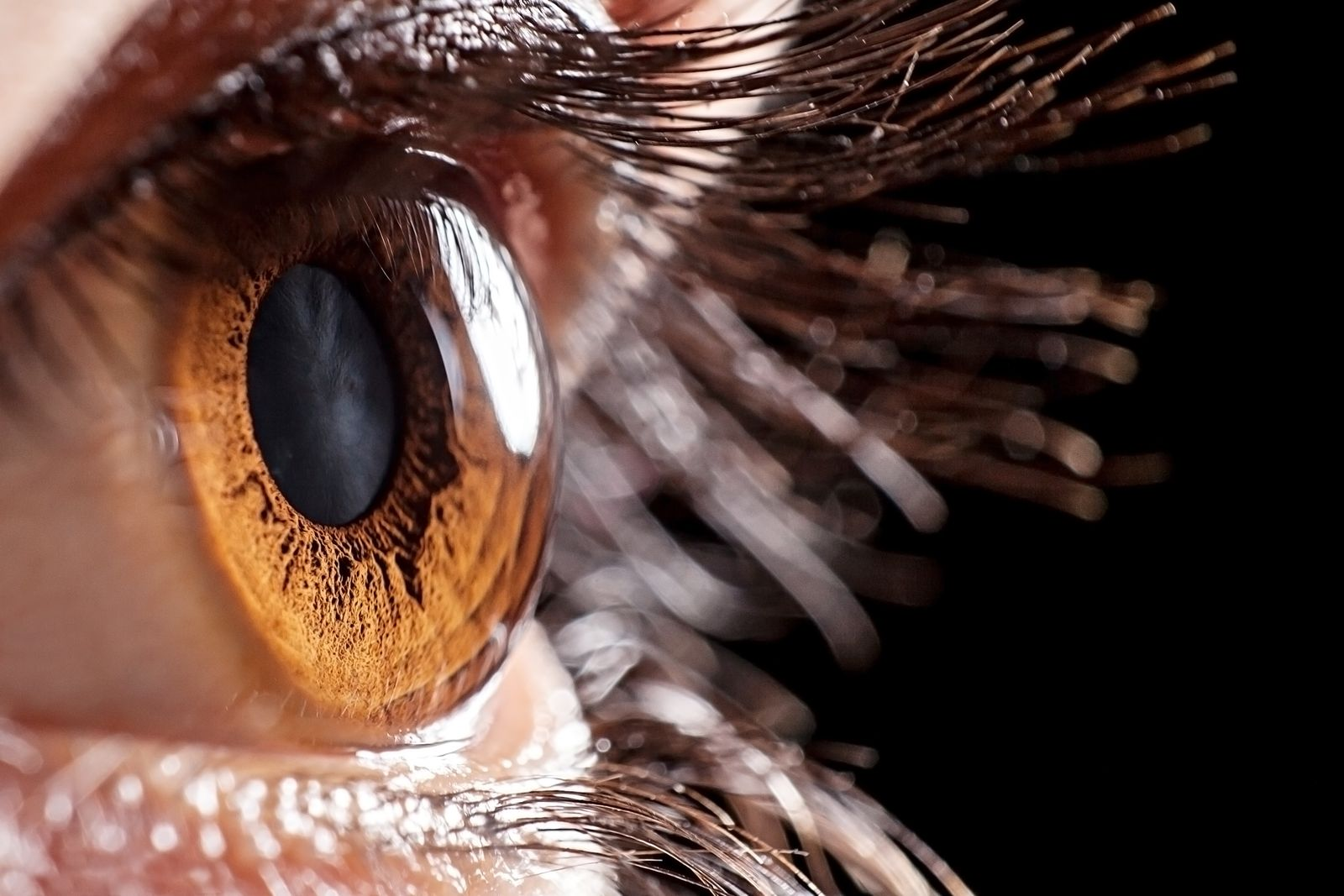 Jakou barvu mají vaše oči?
